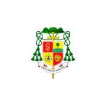 ELEIÇÕES MUNICIPAIS 2020, ORIENTAÇÕES DIOCESANA.
