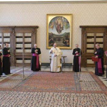 Em novembro, as audiências gerais na Biblioteca do Palácio Apostólico